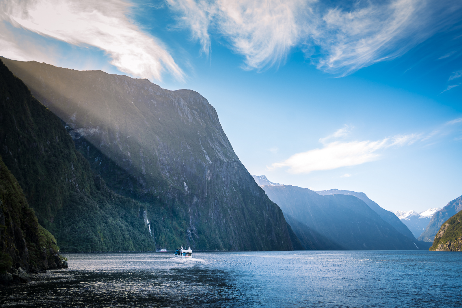 Milford Sound Tours for solo women